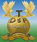 Logo-DŚFKolor1